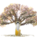 Mindfulness Italia