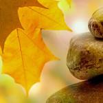 formazione mindfulness in Italia
